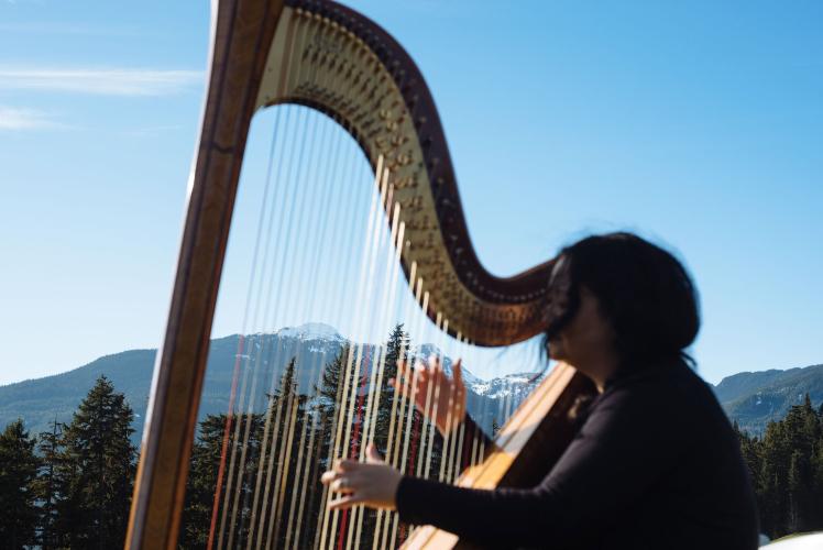 harpest-whistler