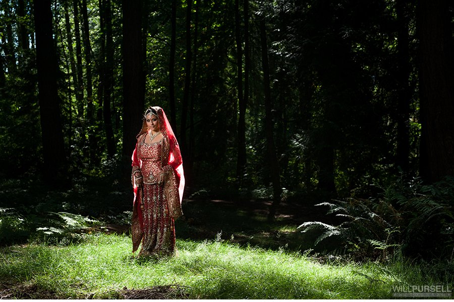 Hindu indian wedding portrait