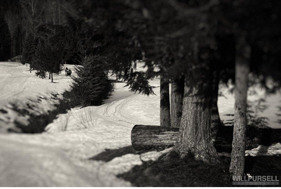 whistler sleigh ride