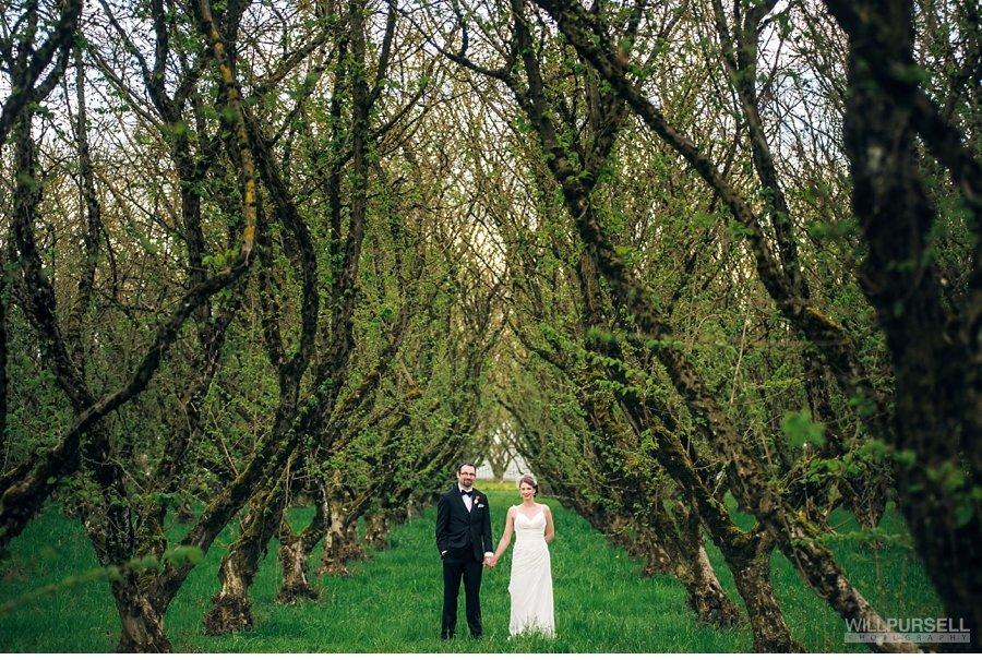 hazelnut tree wedding photos