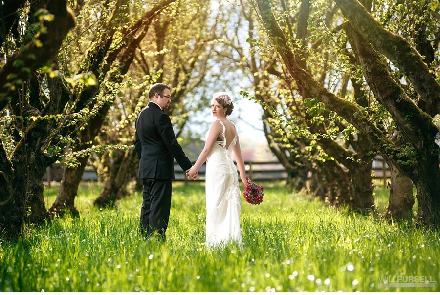 hazelnut farm rustic wedding photos