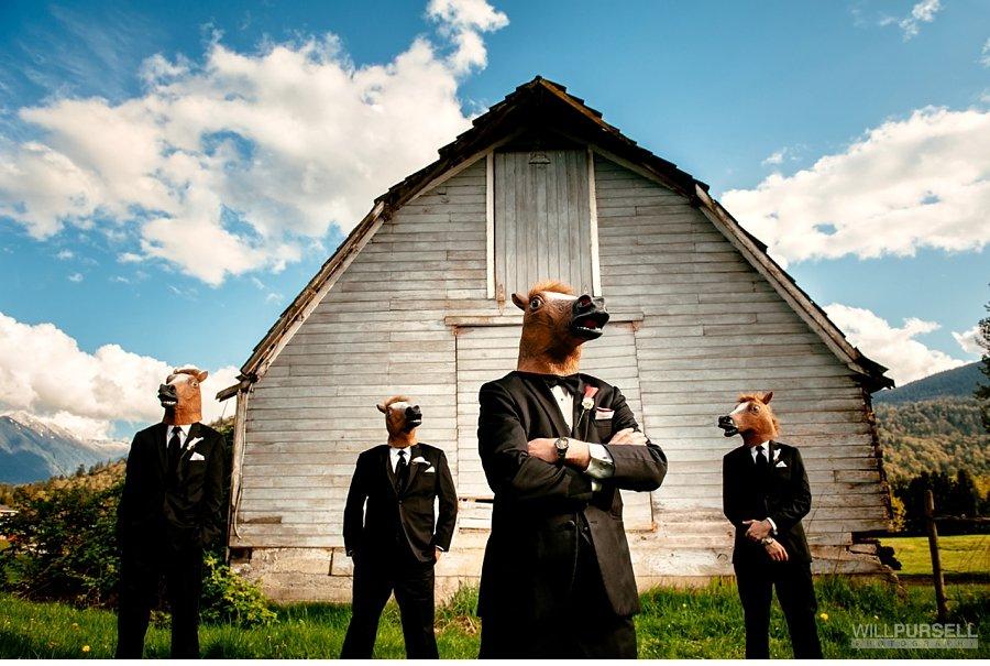 horse head wedding photos