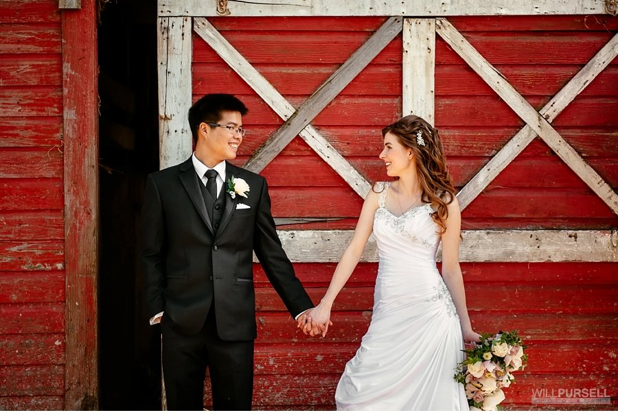 barn wedding abbotsford
