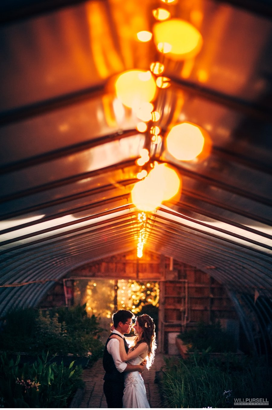 greenhouse wedding night photo