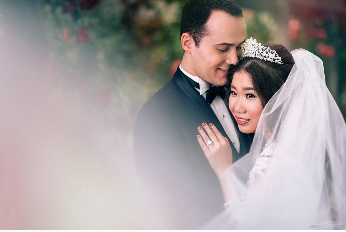 bridal portrait with wedding veil