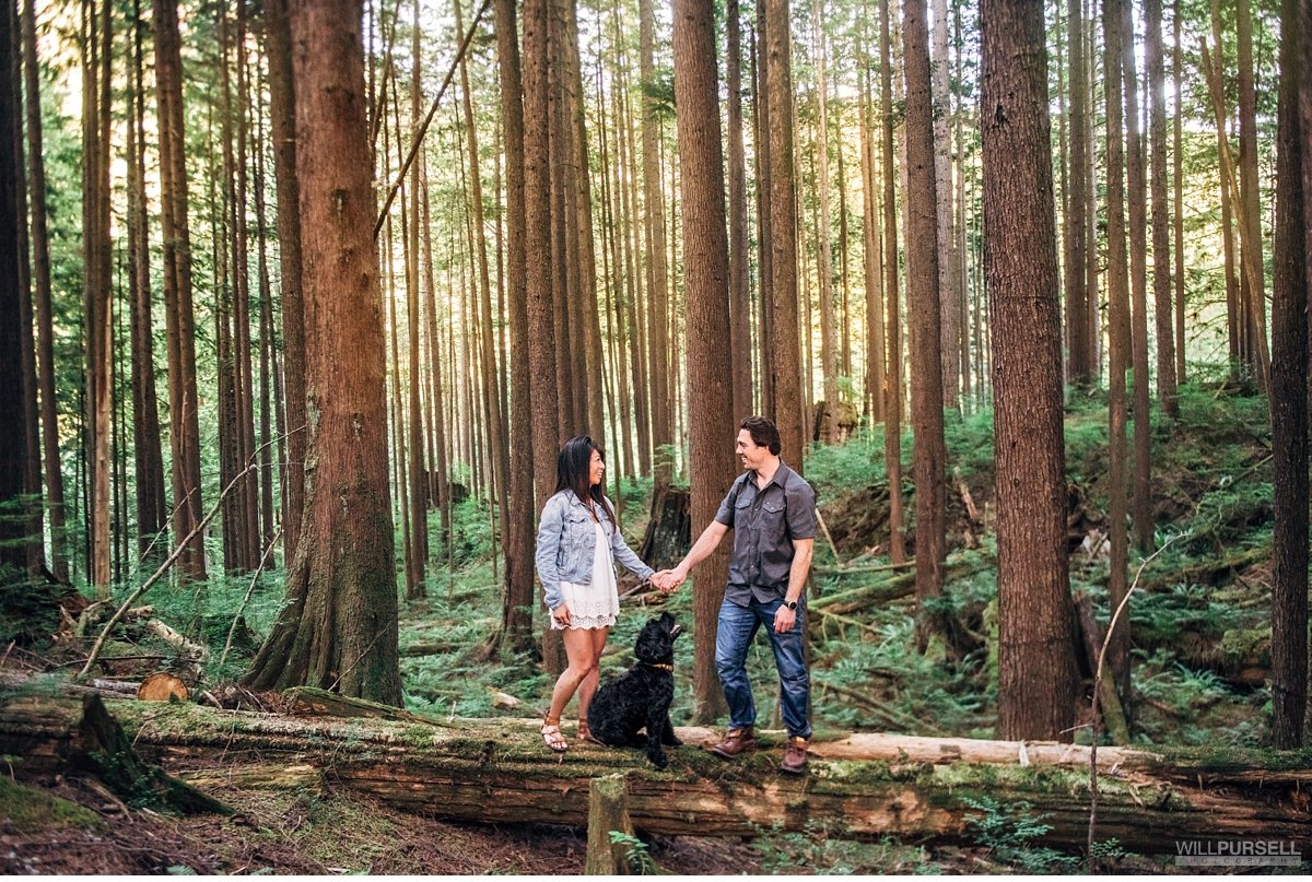 portrait photos in BC forests