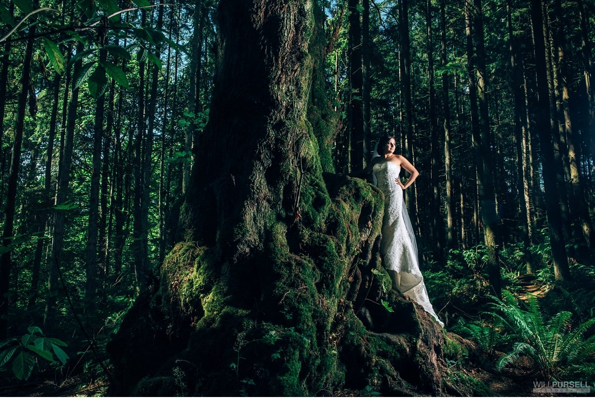 Bridal photo Stanley Park