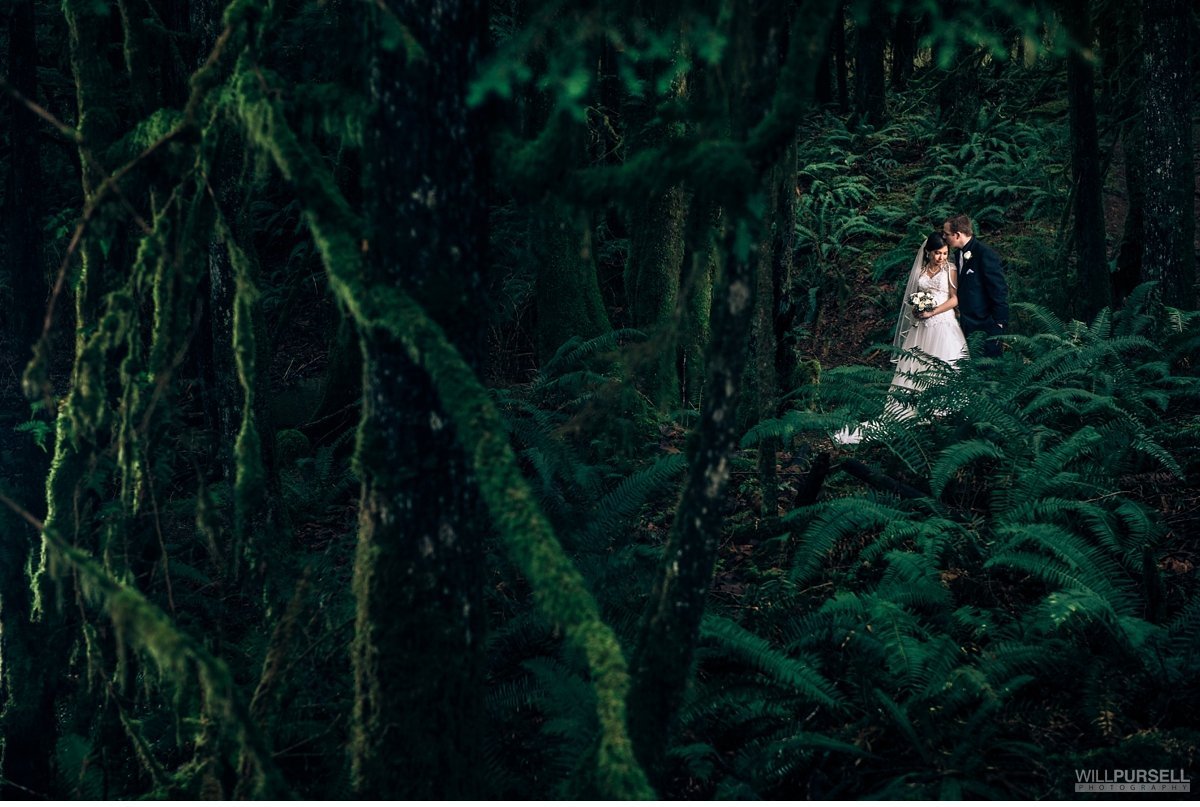 golden-ears-park-wedding