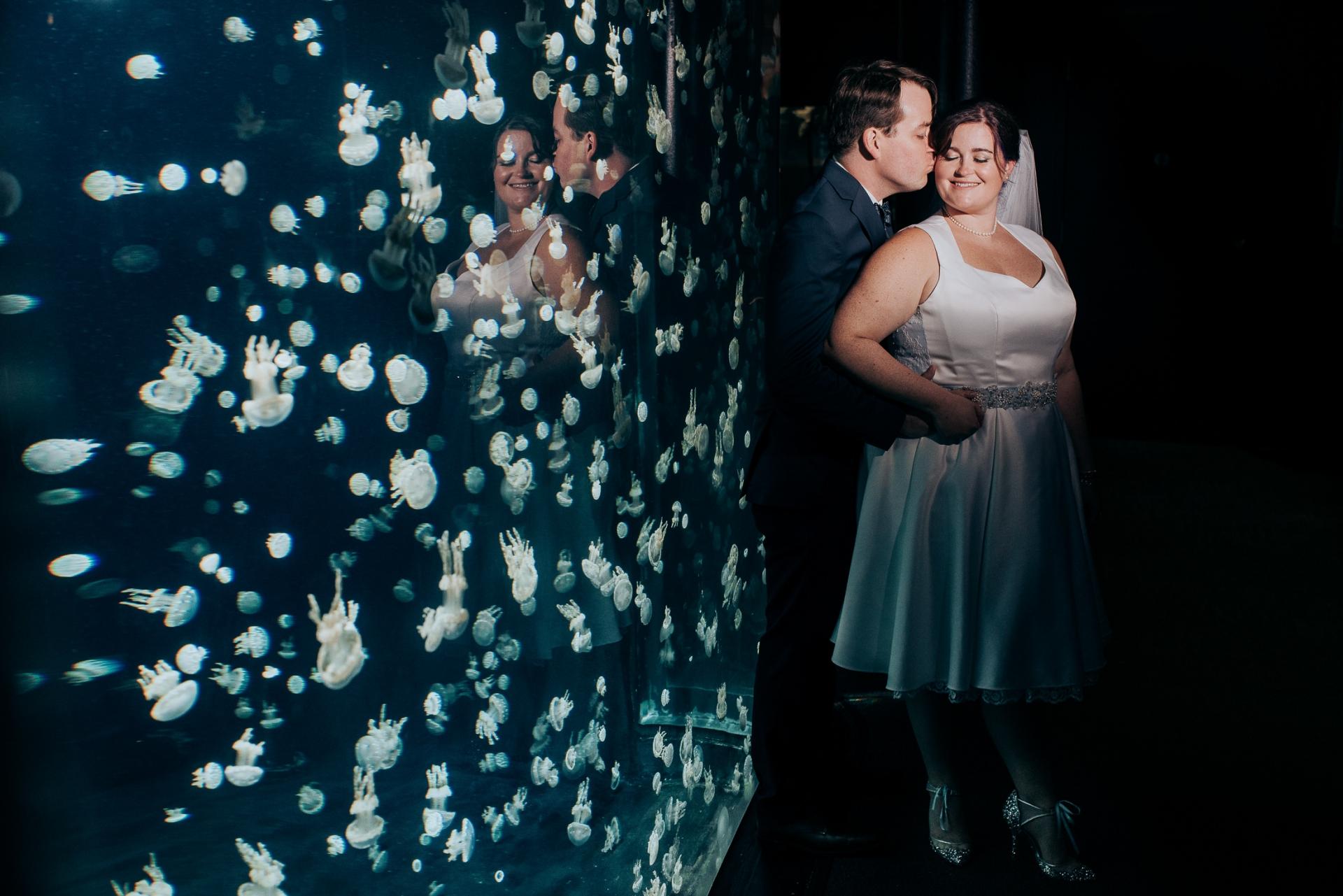 Fall wedding at Vancouver Aquarium Stanley Park