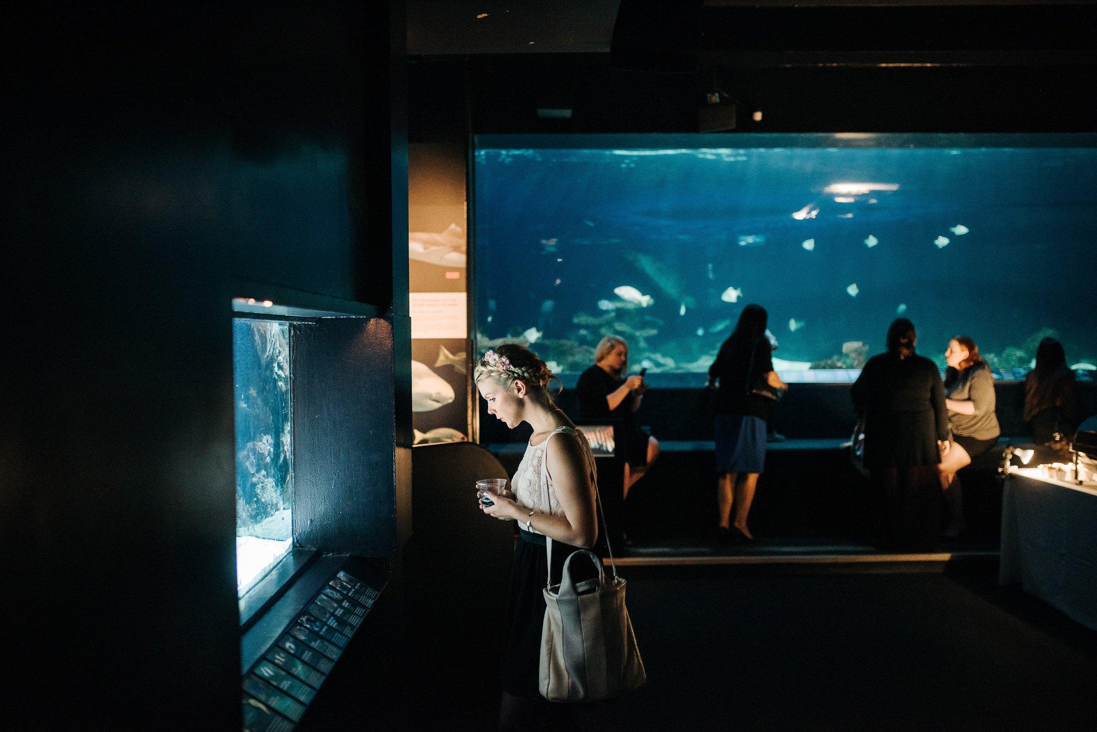 Fish aquarium vancouver - Guests Check Out The Fish At The Vancouver Aquarium