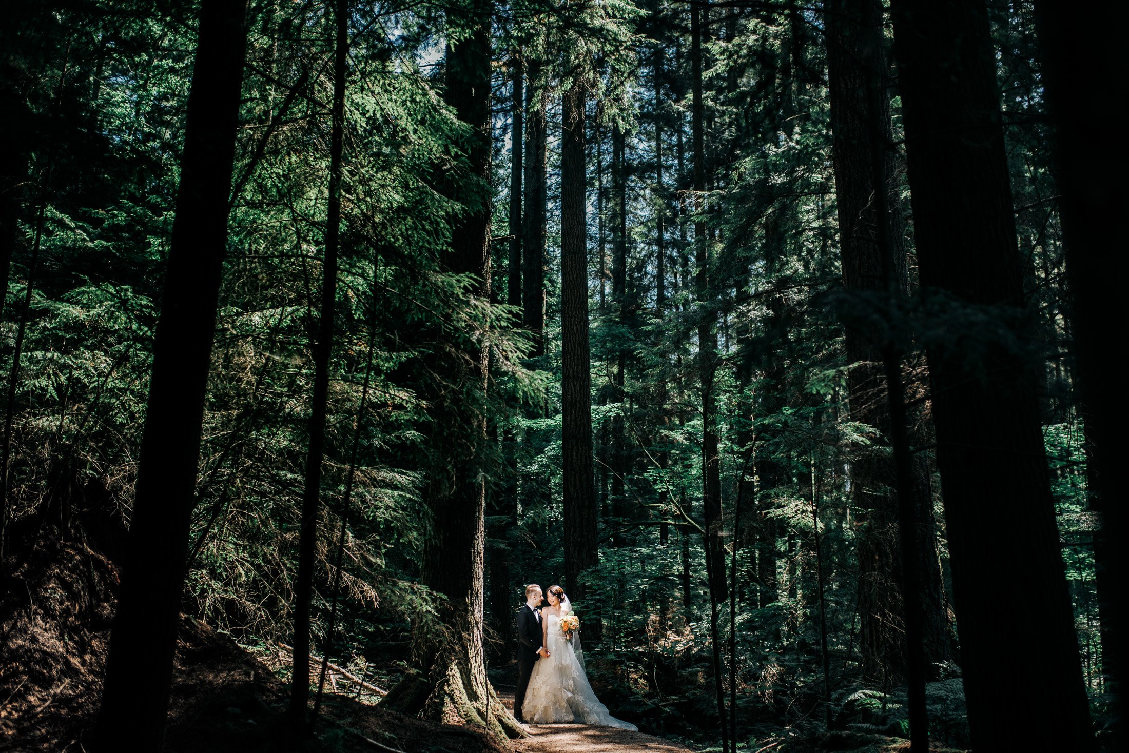 036 - wedding photos in vancouver forest