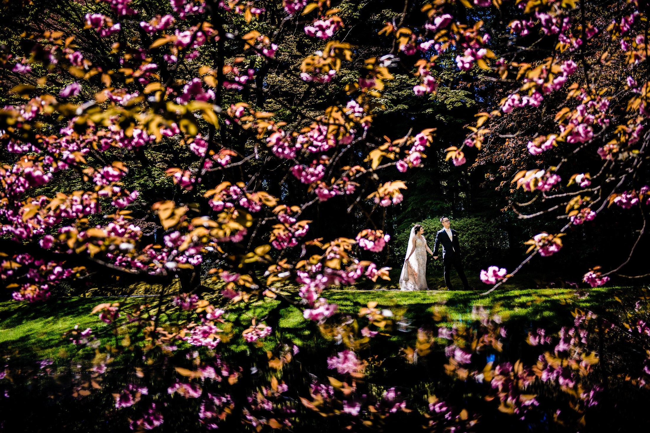 021 - cherry blossom wedding photo